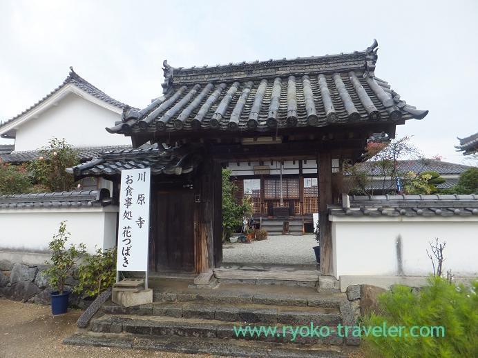 20130121_川原寺