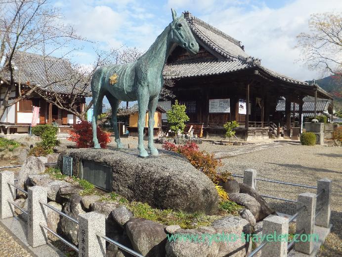 20130128_橘寺・馬