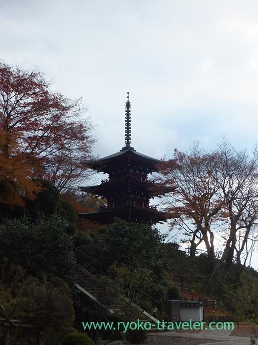 20130129_岡寺・三重塔
