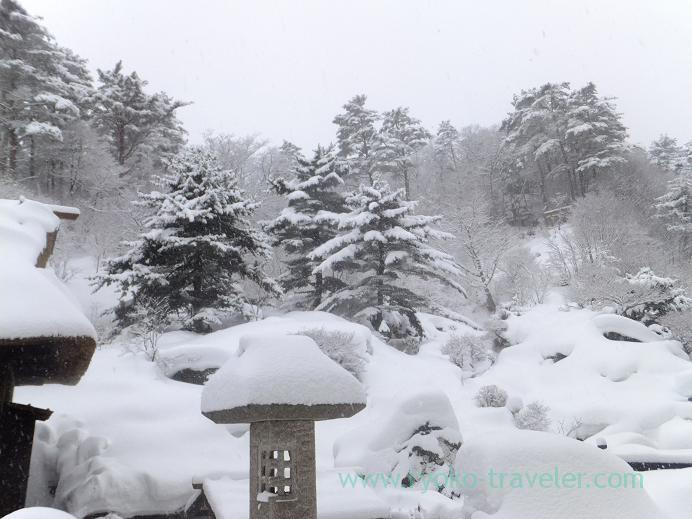 20130317_玉子湯すべてが白い