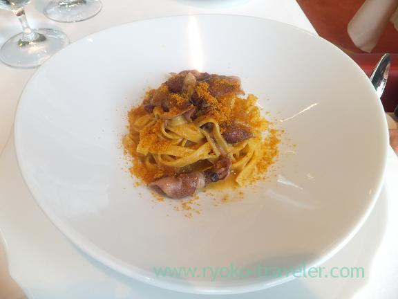 Spaghetti (Firefly squid), Faro