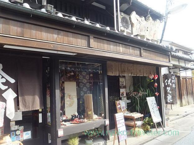 Appearance, Sakura (Nara)