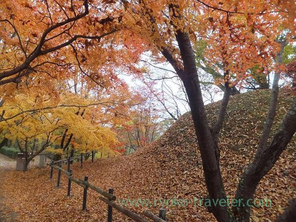 In the Autumn Leaves, Mausoleum of Emperor Monmu (Nara)