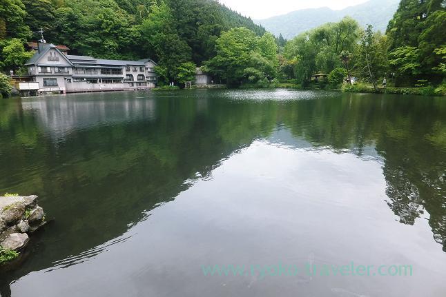 Kinrinko lake1, Yufuin (Oita 2015 Spring)